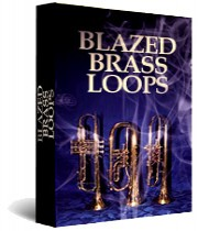 Blazed Brass Loops